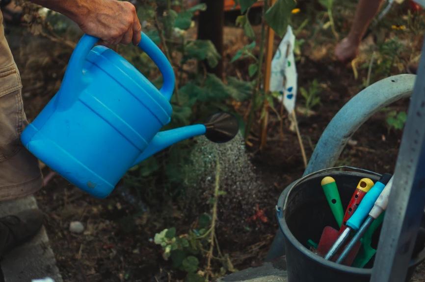 Straż Miejska w Pleszewie karze za podlewanie ogródków w godzinach wieczornych