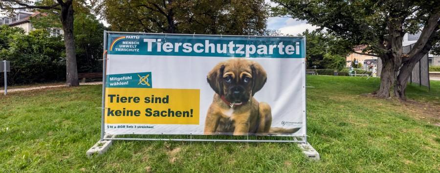 """Das will der Berliner Bezirks-Newcomer """"Die Tierschutzpartei"""""""