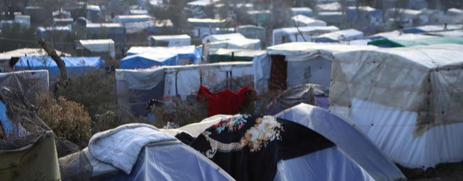 Ausbruch von Milbenkrankheit auf Lesbos