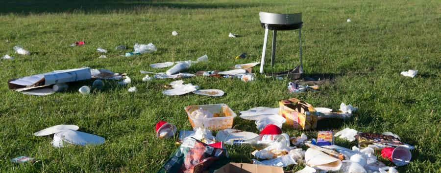 Dreckige Parks suchen saubere Zuständigkeiten