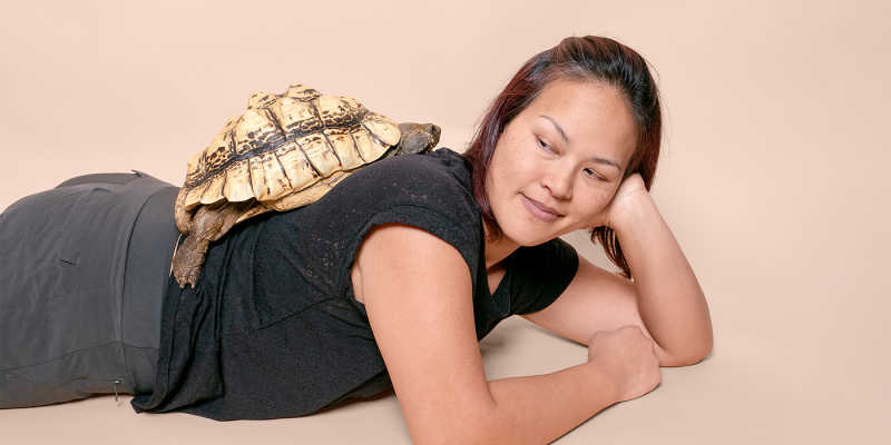 3 A woman laying on her stomach poses with a turtle on her back.