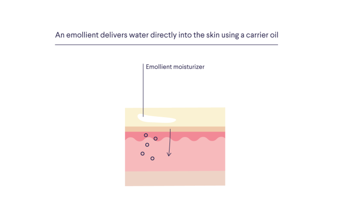 Illustrated diagram showing how emollients work. Text reads,