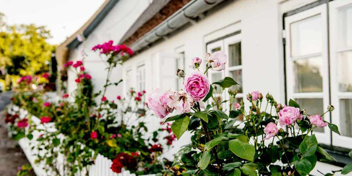 Feriehus i Danmark