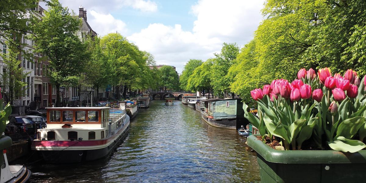 Amsterdam in bloom