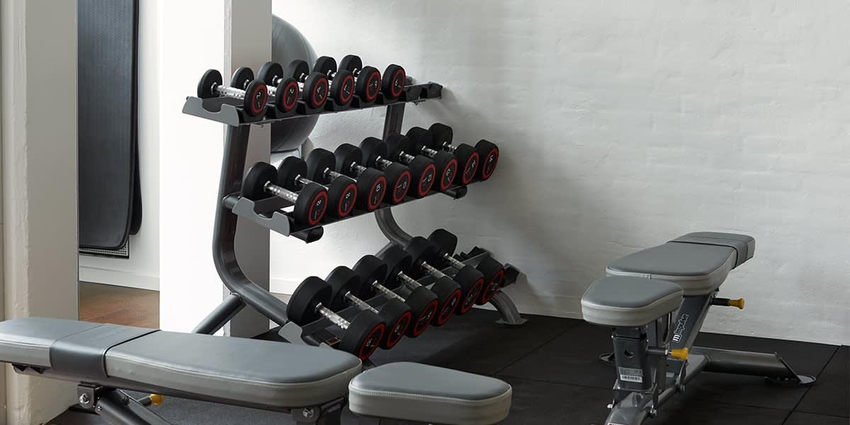 Phoenix hotel - fitness