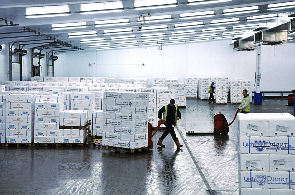 Seafood logistics