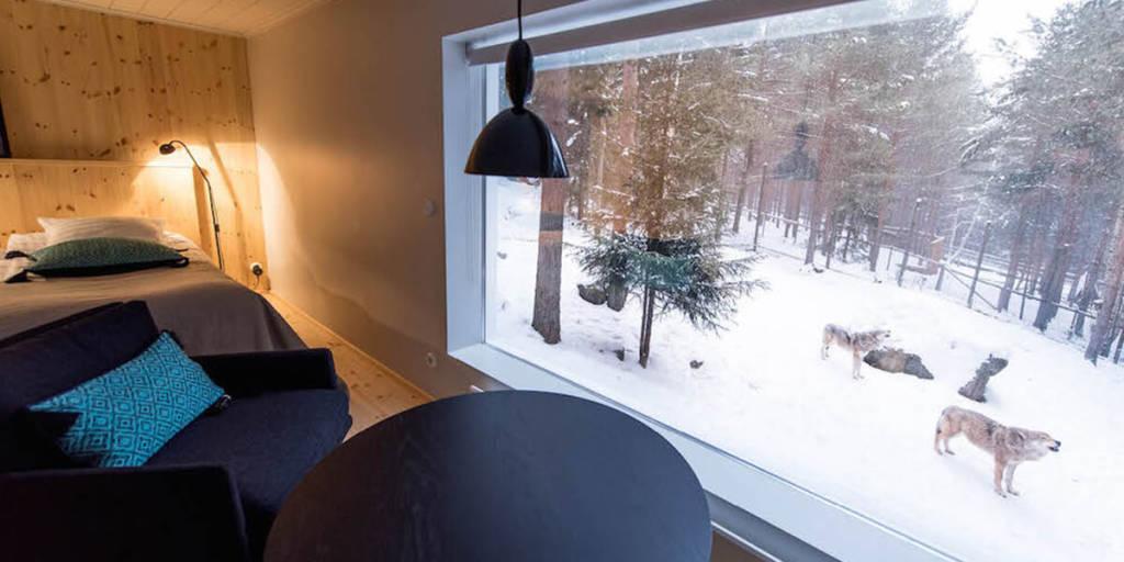 Wolf Hotel in Sweden