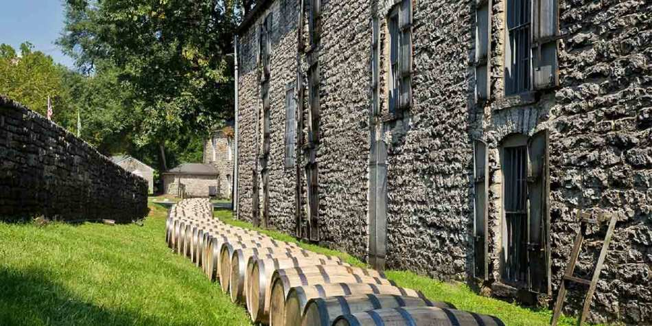 Whiskey Barrels in Scotland