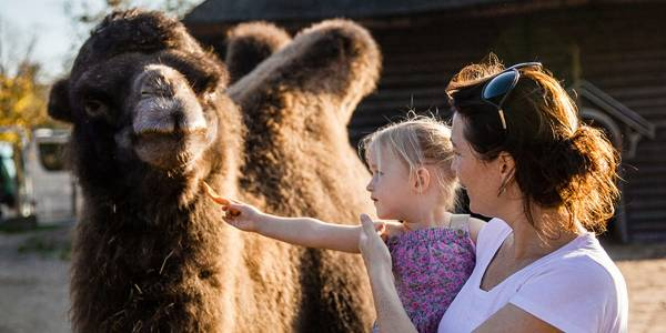 Family at Amsterdam Zoo