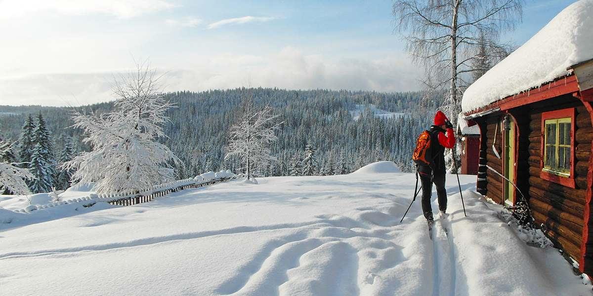 Langrend i Norge - PhotoCredit Visitoslo Tord Baklund