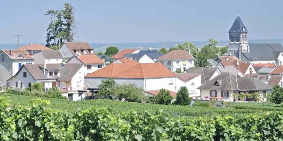 Wine regions in France - Champagne