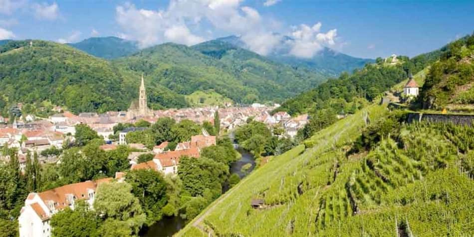 Wine regions in France - Alsace