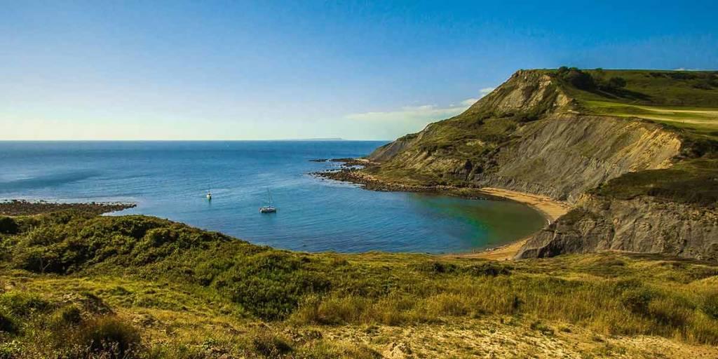 Dorset Nature