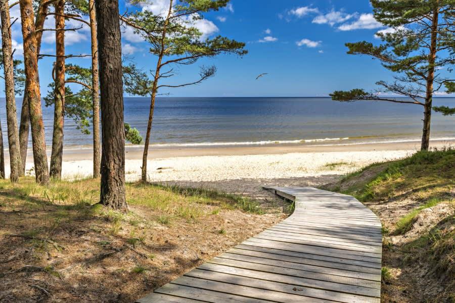 Latvia Baltic Sea co sergei fish13 fotolia