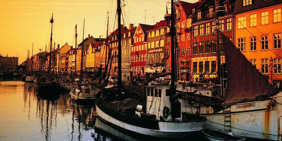 Copenhagen Nyhavn at sunset