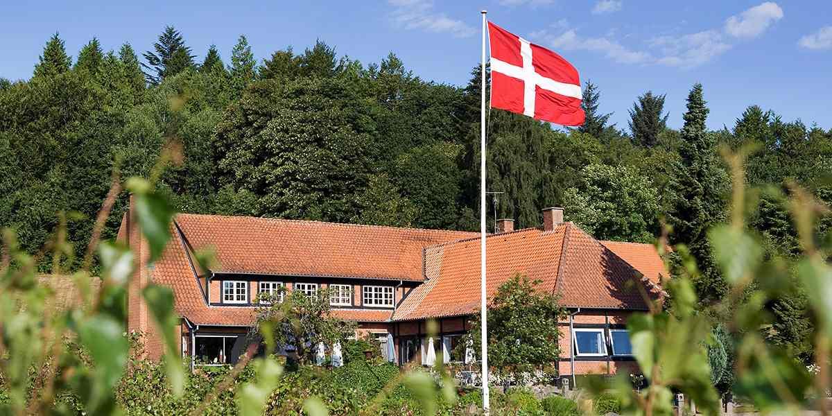 Small Danish - Sallingsund Faergekro - photo credit Claus Haagensen Chili