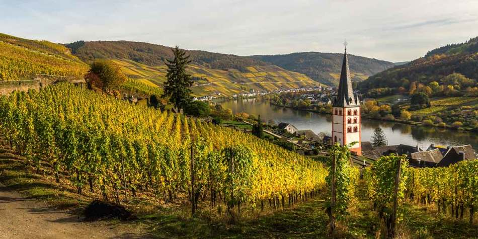 Moselle Merl valley in Germany
