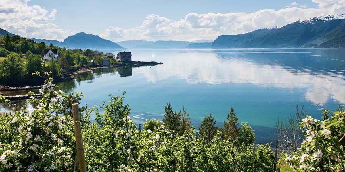 Hardanger i Norge