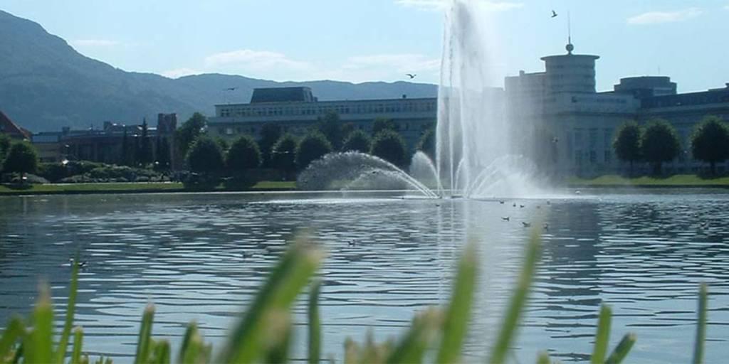 Lille - fountain