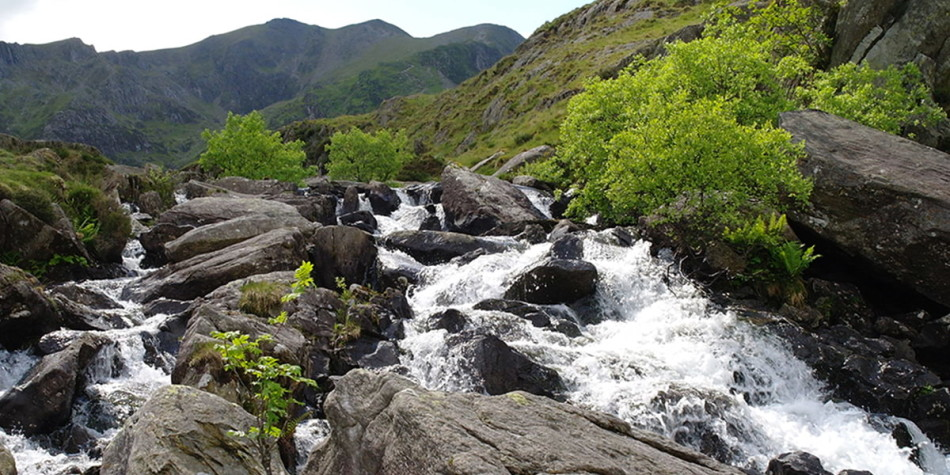 Ogwen valley waterfalls and nature