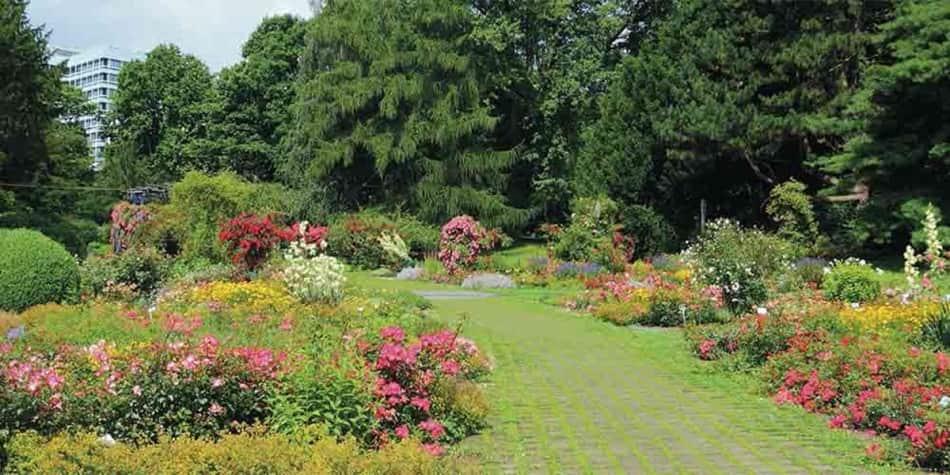 Dortmund - garden