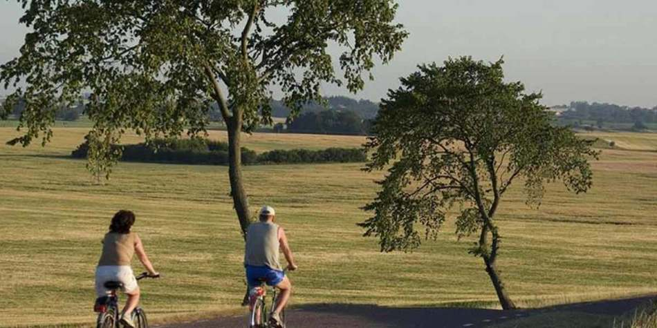 People cycling through fields in Sweden