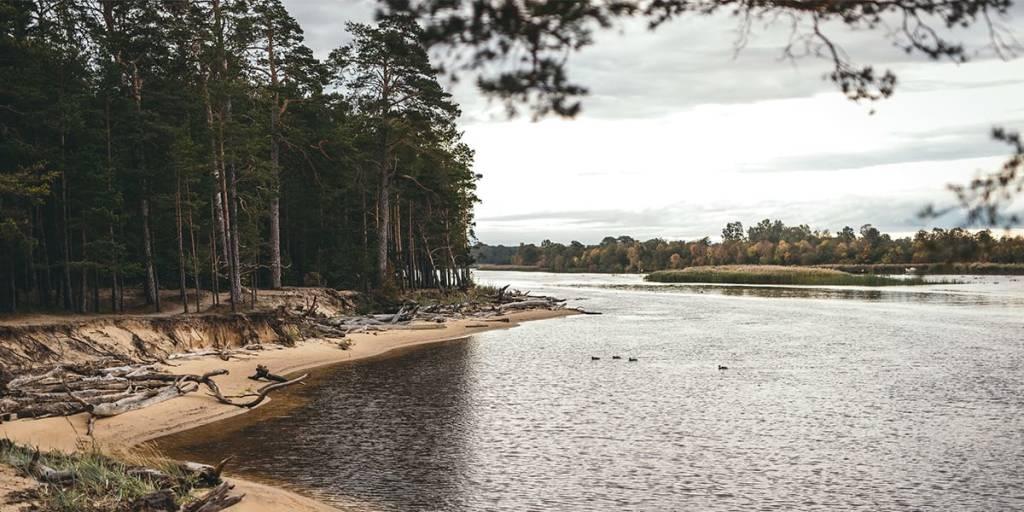 Gauja national park in Latvia - Marek Steins