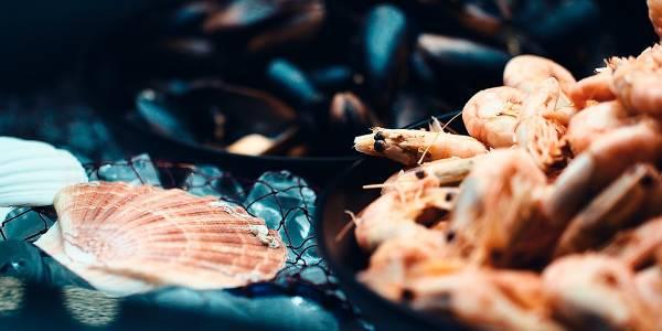7-SEAS - seafood