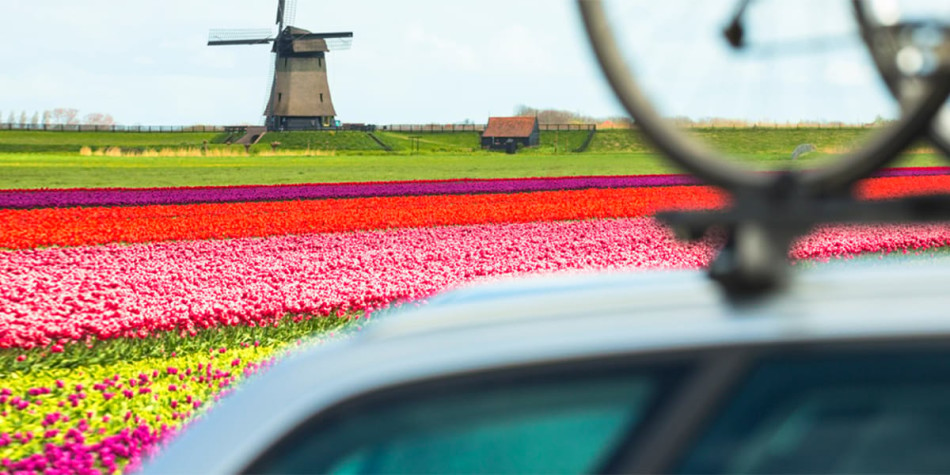 Driving in Holland