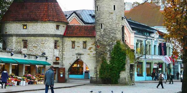 Gamla stan i Tallinn
