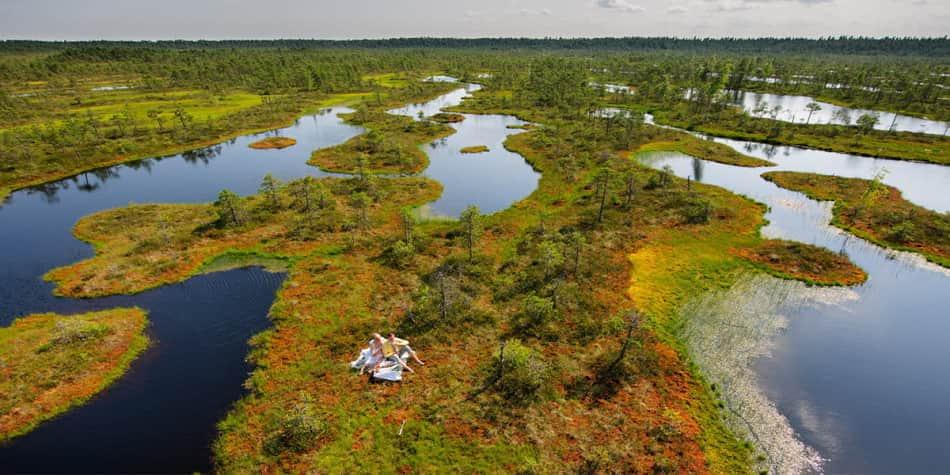 Kerkjedage Bog - Estonia