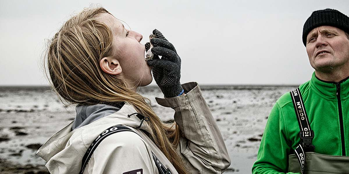 North Jutland - Wadden sea by Ribe Visitdenmark PhotoCredit: Red Star - Nationalpark Vadehavet
