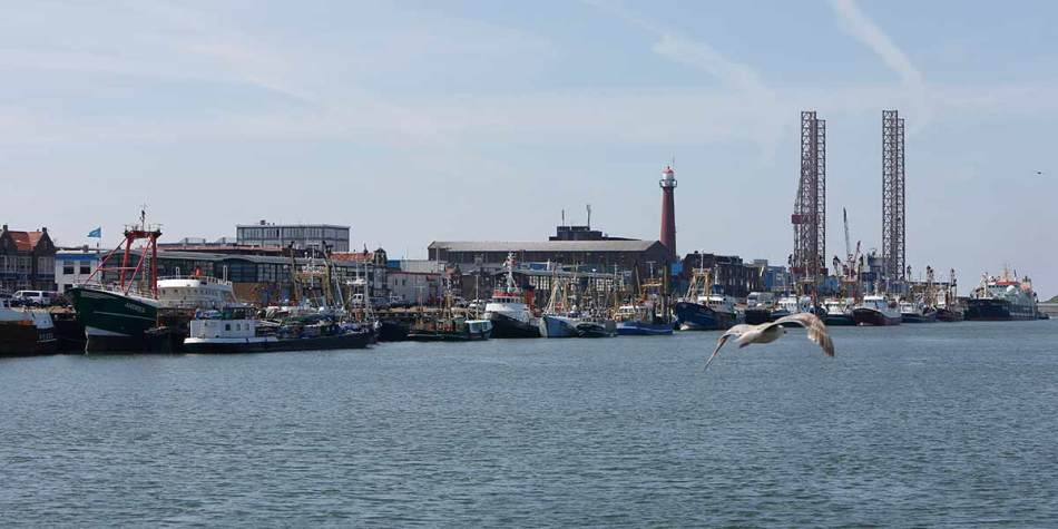 The waterfront in Ijmuiden