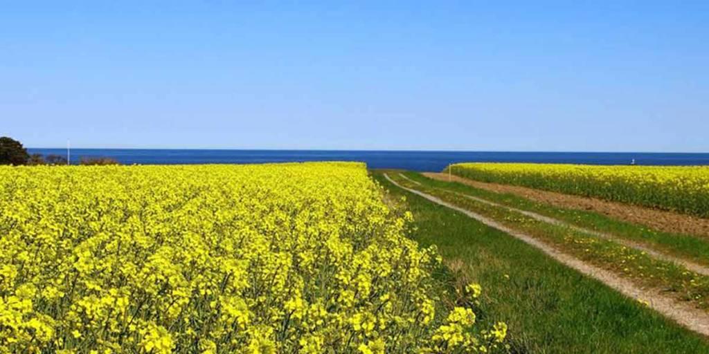 Sweden in 6 days - scenery