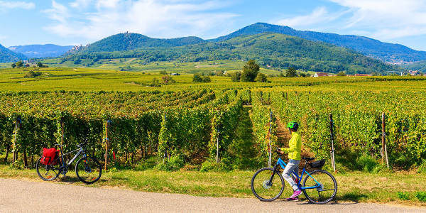 Cycling in France -
