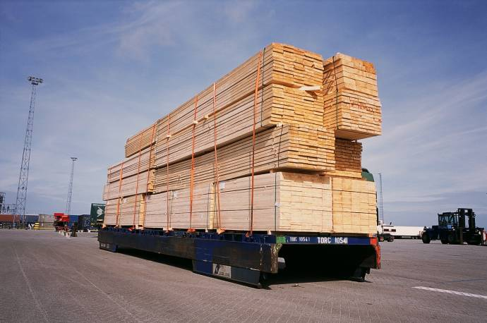 DFDS truck with forestry