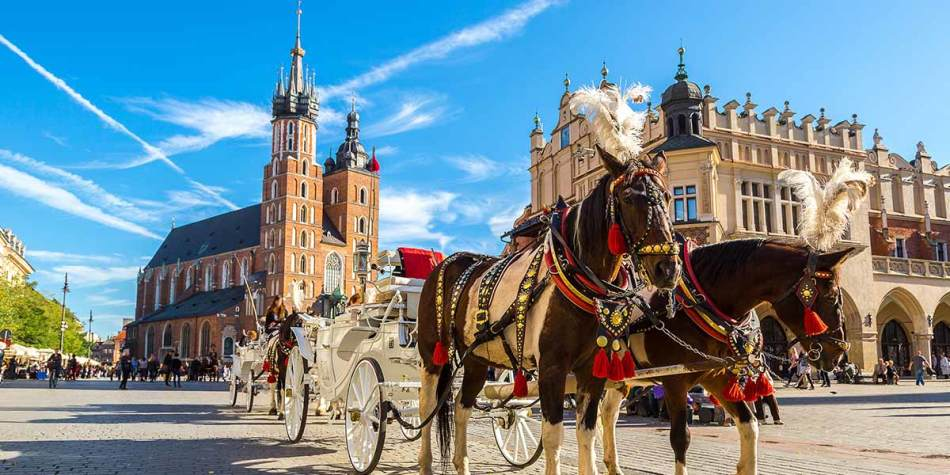 Horses in Krakow city centre