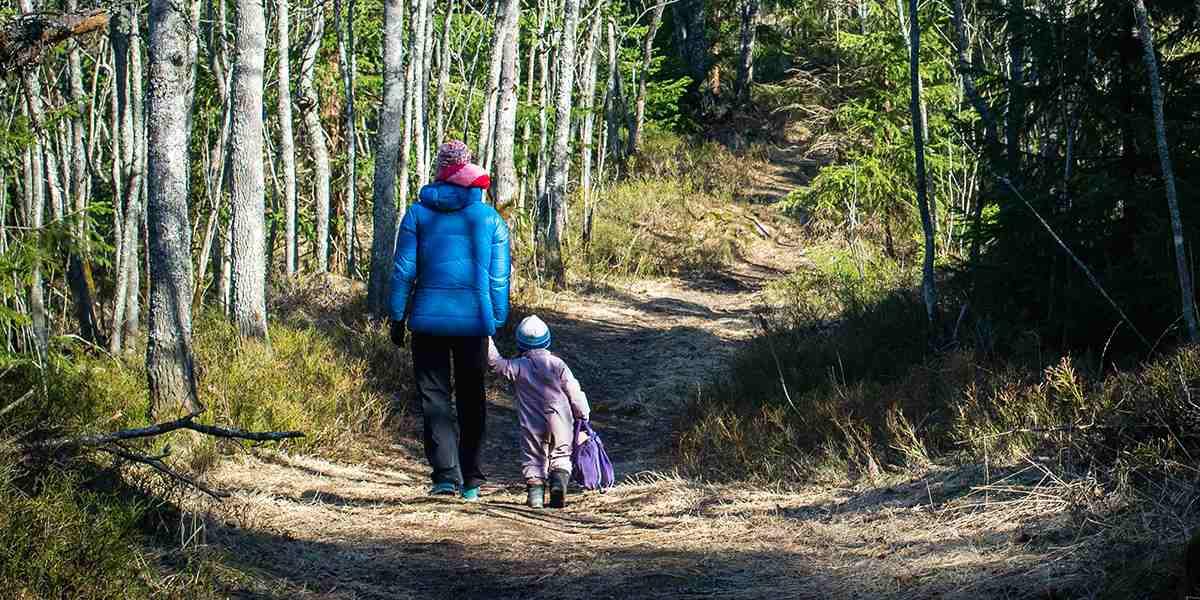 Familie på tur i skoven i oslo