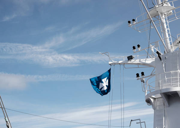 dfds-flag