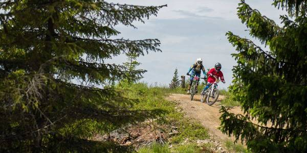 active cycling holiday in Hafjell - Norway - photo credit Gizmo Johnsen