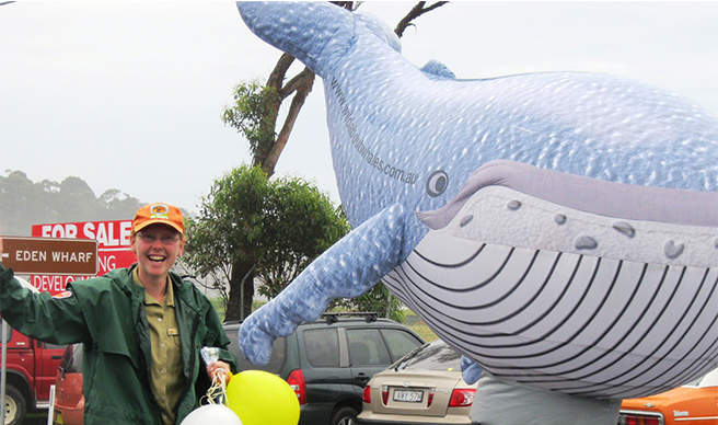 NPWS staff at the Eden Whale Festival. Photo: OEH