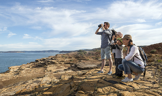 Blog - Bouddi Whale Watching