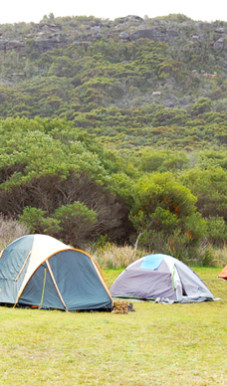 Tallow Beach campground in Bouddi National Park