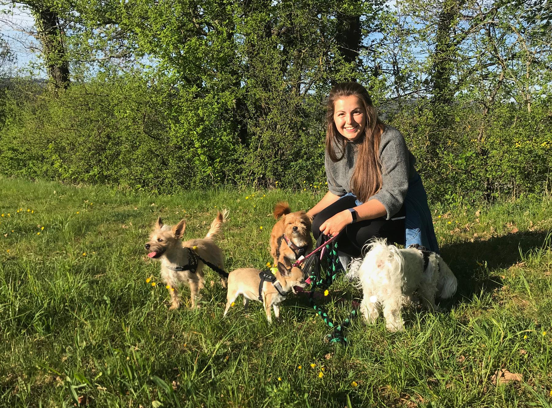 Lea Schmid s'est occupée de pas moins de quatre chiens. ©REDOG