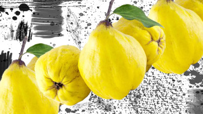 1200x675 quince