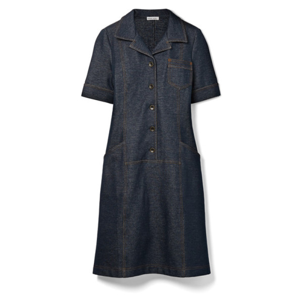 Tomas maier shirt dress