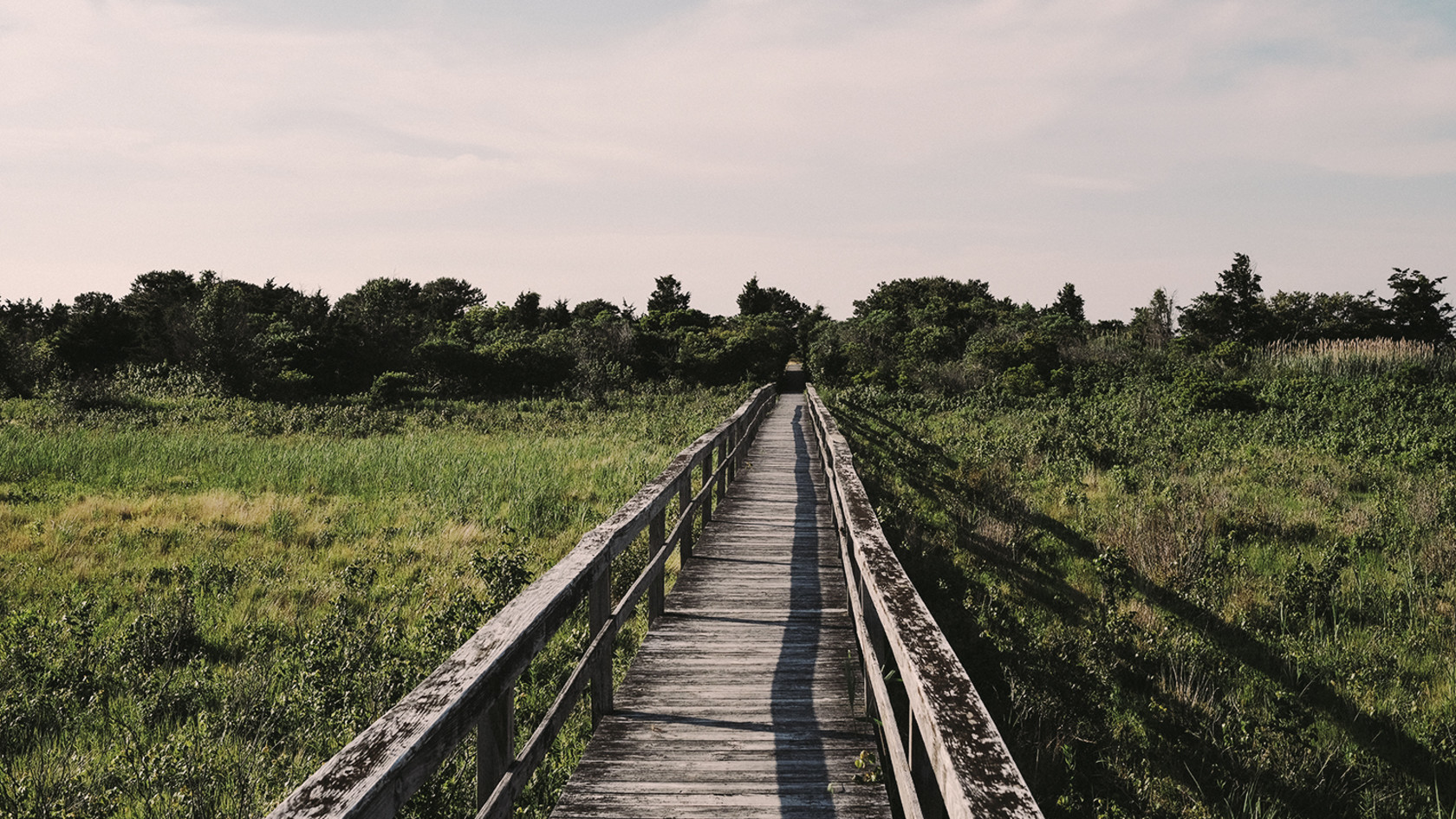 Quogue wooden path