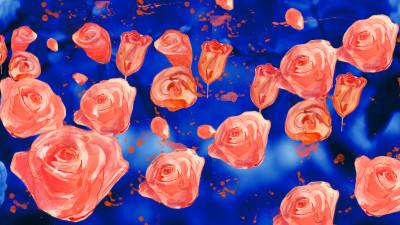 Roses 1200x675