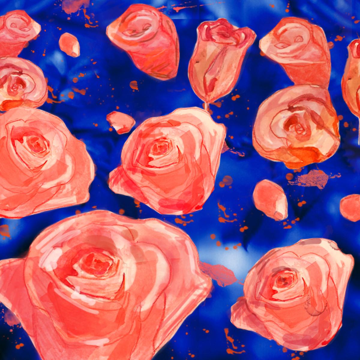 Roses 800x800