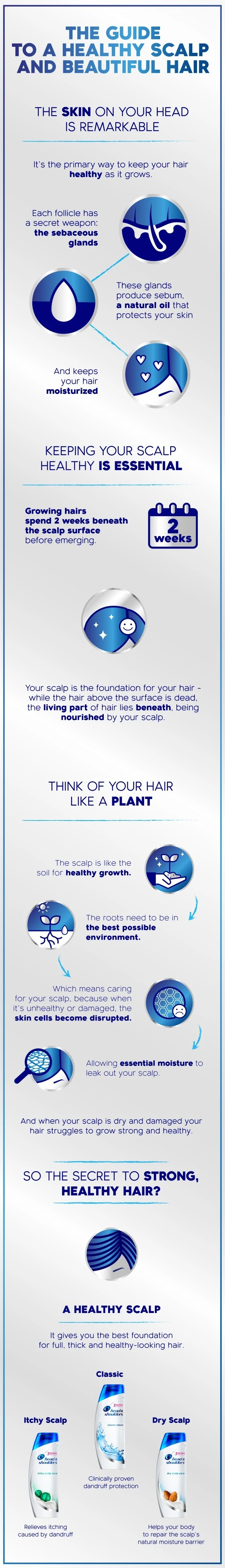 When To Wash Your Hair - Article Image